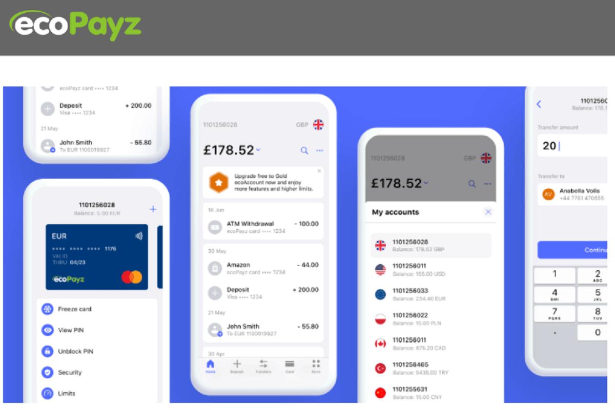 ecopayz payment app